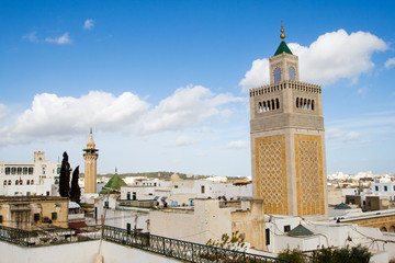 Great View Over the Historic Town of Tunis