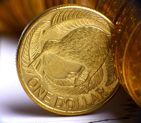 Extremely close up view of New Zealand dollar currency