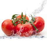 Fototapety pomodori splash