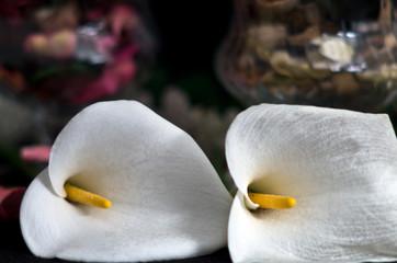 Composizione con  fiore di calla e potpourri