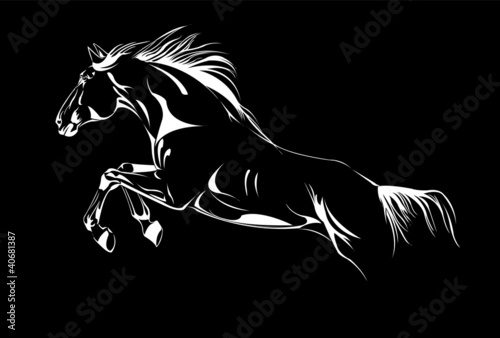 horse jumping on black vector