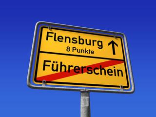 Führerschein weg bei 8 Punken ( Reform 2013)