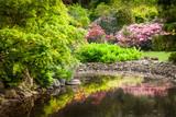 Fototapety Garden full of flowers