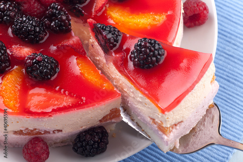 Piece of Fruit Yogurt Cake