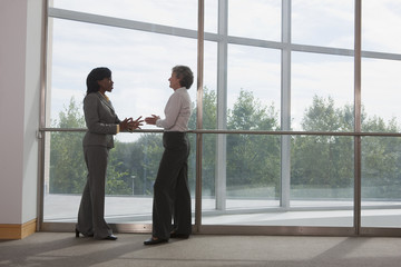 Two business executives talking in an office