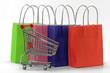 einkaufswagen mit einkaufstaschen
