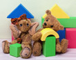 Teddy Bear and Elephant with toy blocks