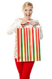 Happy shopping woman holding bag