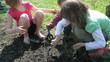 group of elementary kids and toddler planting and digging