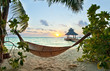 Fototapeten,hängematte,tropisch,strand,sonnenuntergang