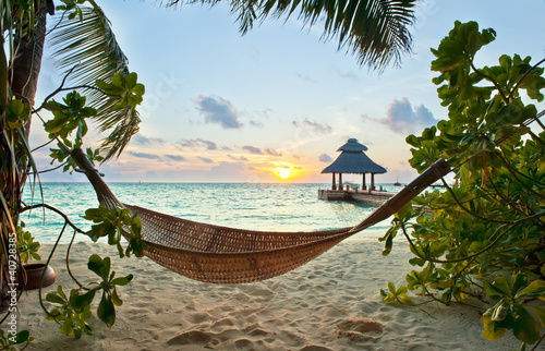 Hammock and sunset - 40728385