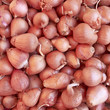 onions closeup, food background