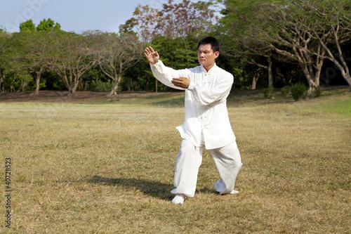 Fototapeta man in a kung fu position