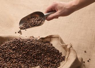 Scelta del Caffè