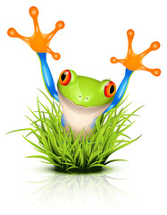 Little tree frog on grass