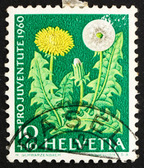 Postage stamp Switzerland 1960 Dandelion, Flowering Plant