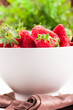 Strawberries with green plant background