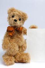 Blank sign - Teddy Bear