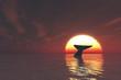 クジラと夕日
