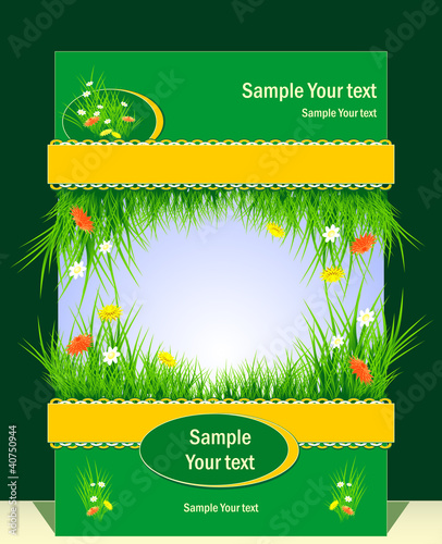 Frame with grass and field flowers for presentation