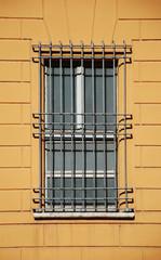 gray-window