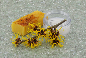 Witch Hazel Products