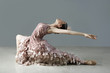 Ballet dancer posing in ornate gown