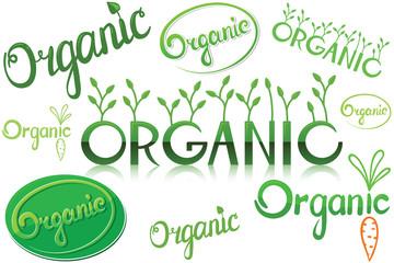 Hand-drawn calligraphic organic lettering set