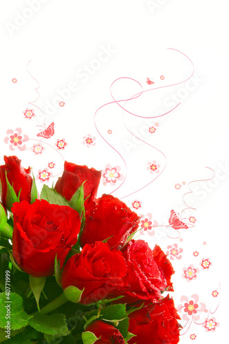 Fototapeten,schweiss,rosette,blume,rose
