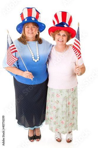 Stock Photo of American Voters