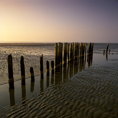 Decaying wooden posts on sandy beach