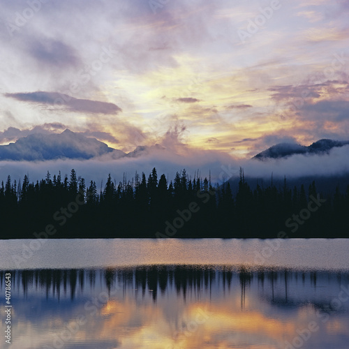 Silhouette of trees reflected in still lake