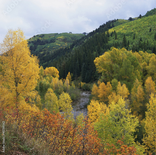 Autumn trees and hills in rural landscape