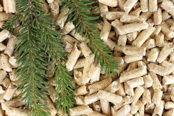 Holzpellets Tanne