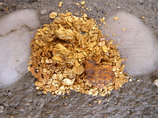 gold nuggets & flakes