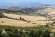 Agricultural Landscape, Near Almogia, Spain © Arena Photo UK