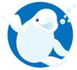 polar white whale Beluga