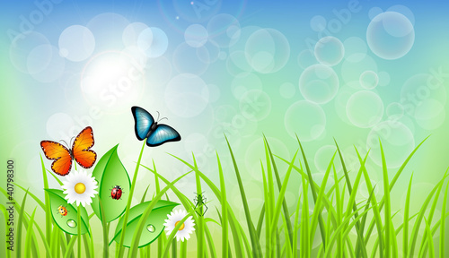 Spring Vector Background with Grass