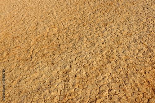 Fotobehang Droogte Cracks in desert sand, Wadi Rum