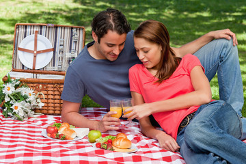 Two friends touching glasses against each other during a picnic