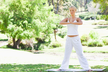 Woman doing her yoga exercises in the park