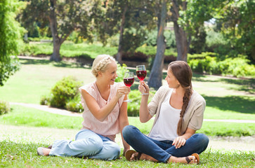Friends having a glass of red wine in the park