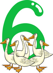 number six and 6 geese