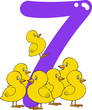 number seven and 7 chicks