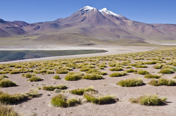 Miniques Mountain & Lagoon in Atacama Desert Chile