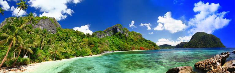 panorama of beautiful deserted tropical beach © Freesurf
