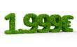 1999 € 3d Schrift gras