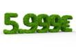 5999 € 3d Schrift gras