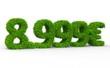 8999 € 3d Schrift gras