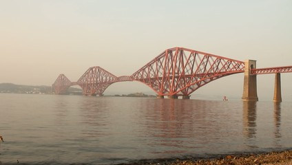 The Forth bridge, with swan swimming